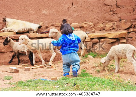 Little farmer with sheep - stock photo
