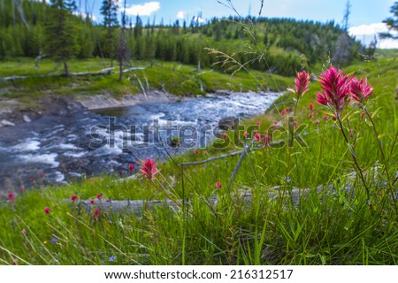 Little Firehole River near the Mystic Falls Yellowstone National Park - stock photo