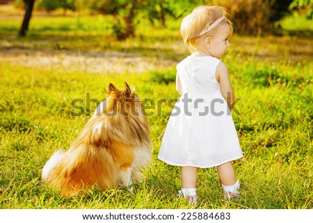 Little girl and dog breed sheltie playing outdoors on a sunny day - stock photo