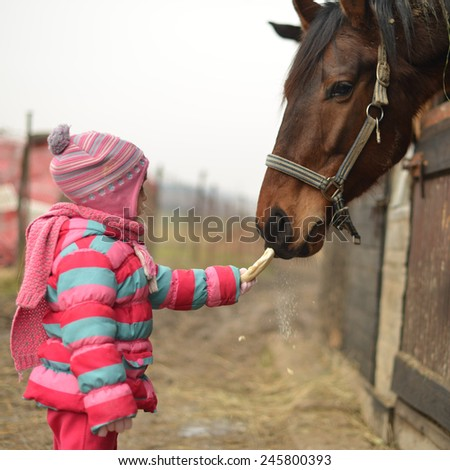 Little girl and horse - stock photo