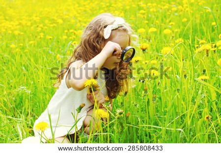 Little girl child looking through a magnifying glass on yellow dandelion flowers - stock photo