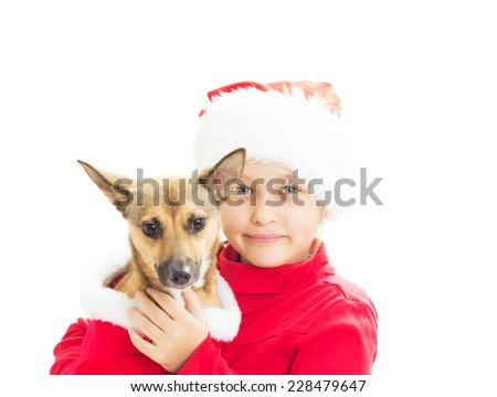 little girl dressed as Santa holds a the redhead dog on white background isolated - stock photo