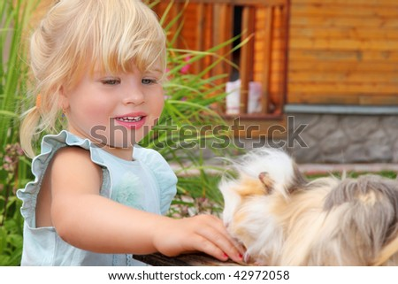 little girl feeds Guinea pig in courtyard near house - stock photo