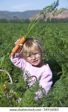 Little girl in a carrot field - stock photo