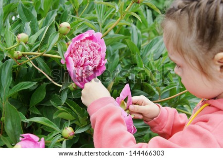 Little girl in a garden touches peony flower - stock photo