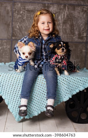 Little girl is sitting with chuhuahua dogs - stock photo