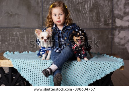 Little girl is sitting with two chuhuahua dogs - stock photo