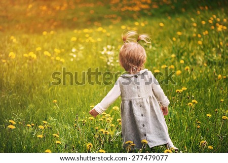 little girl learning to walk sunny summer, taking the first steps in a meadow of green grass and dandelions  - stock photo