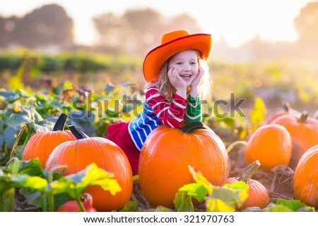 Little girl picking pumpkins on Halloween pumpkin patch. Child playing in field of squash. Kids pick ripe vegetables on a farm in Thanksgiving holiday season. Family with children having fun in autumn - stock photo