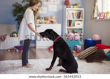 Little girl playing with dog at home  - stock photo