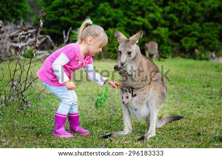 Little girl playing with Kangaroo at zoo - stock photo
