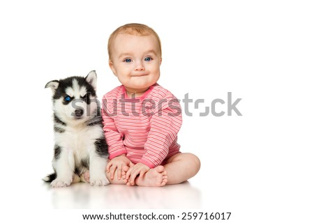 Little girl with a puppy husky, isolated on white - stock photo