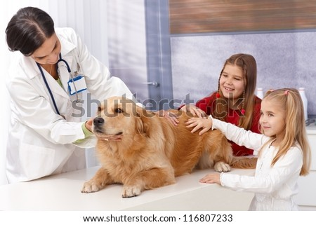Little girls and golden retriever at pets' clinic during examination. - stock photo