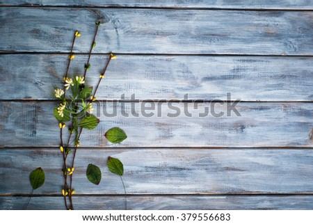 Little green flower at wooden surface. Space for text. - stock photo