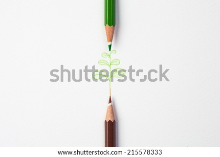 little green tree by color pencil on paper - stock photo