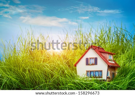 Little House on the green grass - stock photo