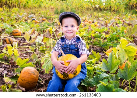 Little kid with pumpkin in hands sitting on vegetable garden - stock photo