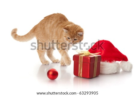 Little kitten, gift box and headdress of santa claus on a white background. - stock photo