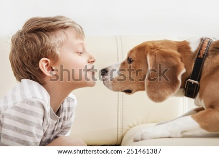 Little piece of cookies to my friend - boy give cookies part for beagle - stock photo