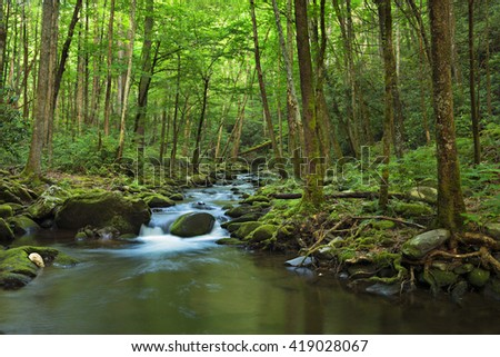 Little Pigeon River.Water cascades over boulders covered in green moss. Smoky Mountains National Park. - stock photo