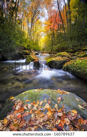 Little River off of Tremont Rd. in Great Smoky Mountain National Park with fall colors on display - stock photo