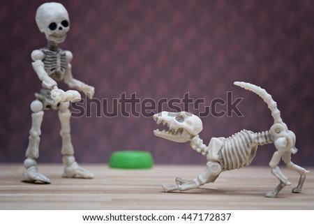 Little skeleton offering bone to skeleton dog - stock photo