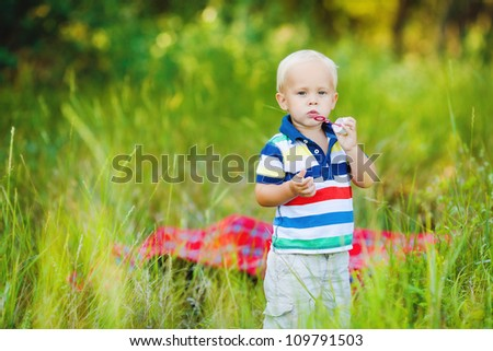 Little smiling boy in summer meadow - stock photo