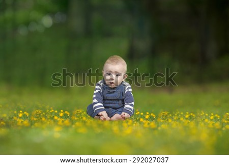 little toddler seated outdoors, in grass with buttercups - stock photo
