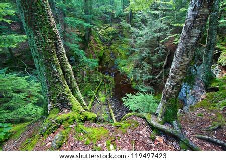 Little Union River Gorge Michigan - stock photo