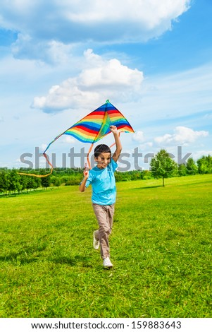 Little 6 years old boy in blue shirt running with kite in the field on summer day in the park - stock photo