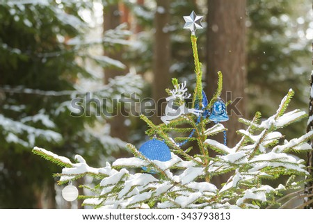 Live spruce tree in snowy wood decorated with Christmas ornaments and shiny star finial  - stock photo