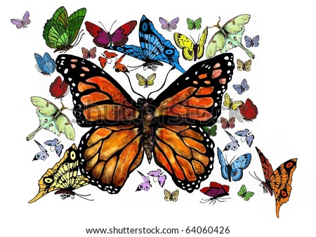 Lively and Colorful Butterfly Swarm - stock photo
