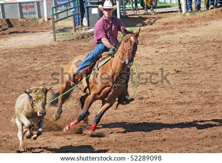 LLANO, TEXAS - APRIL 18: Cowboy roping  a steer at the Llano Crawfish Open Team Roping Competition April 18, 2008 in Llano, Tx. - stock photo