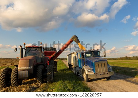Loading crop of corn to Semi Truck from combine harvester after harvest - stock photo