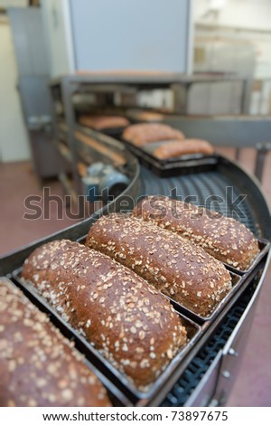 Loafs of bread being made in a factory - stock photo