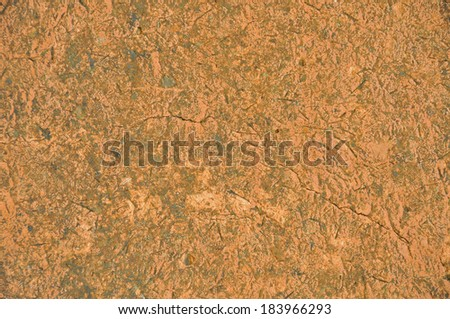 Loam wall's rough surface (texture, background) - stock photo