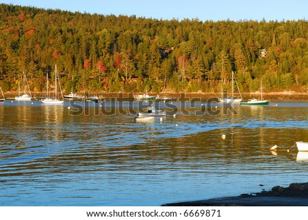 Lobster and sail boats in a cove with fall colors and blue sky - stock photo