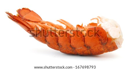 lobster tail  - stock photo