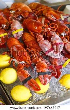 Lobsters at the Washington DC Fish Market - stock photo