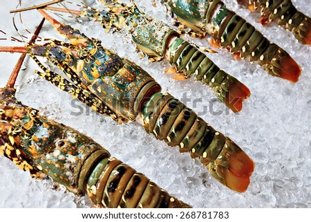lobsters on ice on store shelves - stock photo