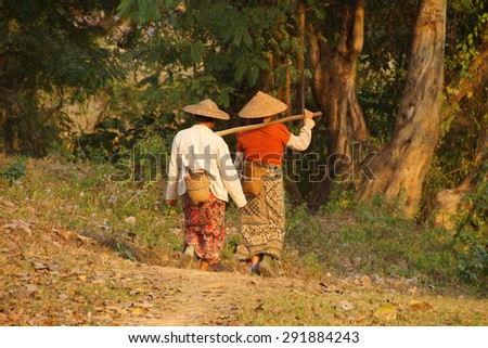 Local village women return home in the evening after working in their fields,  Hsipaw,  Myanmar (Burma) - stock photo