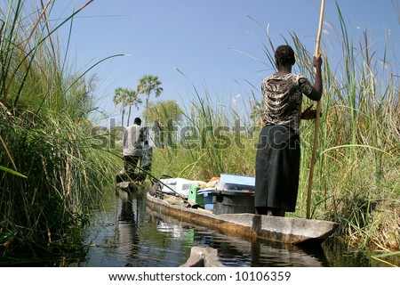 local working people in the delta, botswana - stock photo