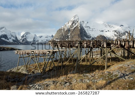 Lofoten mountains and fishing village with cod stocks as seen from Toppoy Island, Norway - stock photo