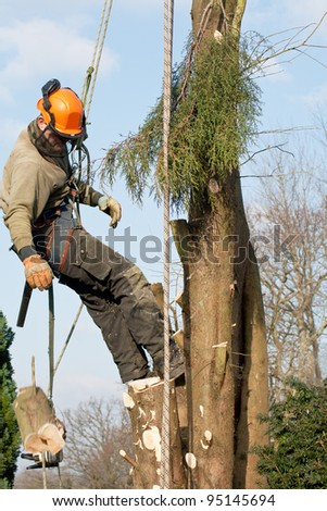 Log (moving !) and chainsaw being lowered by a man felling a tree - stock photo