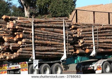 Log truck - stock photo