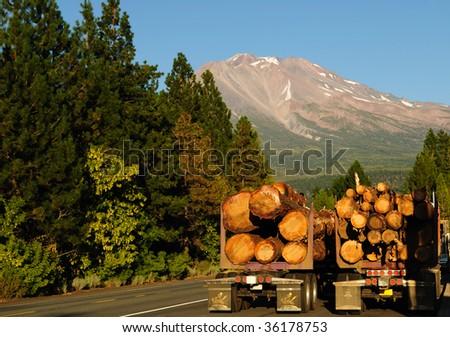 Logging trucks beneath majestic Mount Shasta - stock photo