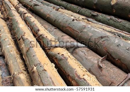 logs - stock photo