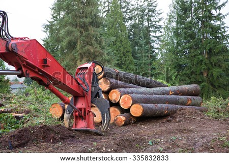 Logs chopped for lumber - stock photo
