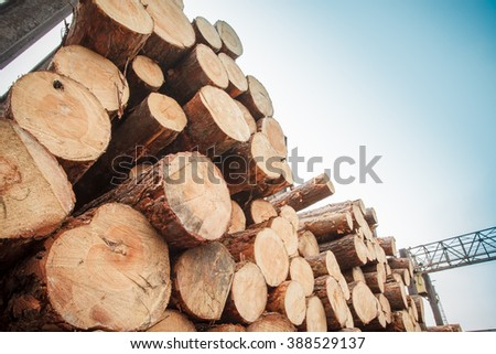 logs stacked sky industry material - stock photo