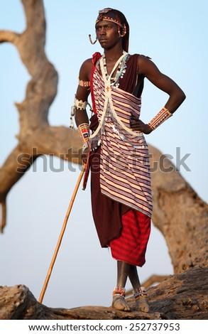 Loitoktok - KENYA - JANUARY 9, 2015: Unidentified Maasai warrior with traditional headdress and necklace on January 9, 2015 in Loitoktok, Kenya. - stock photo